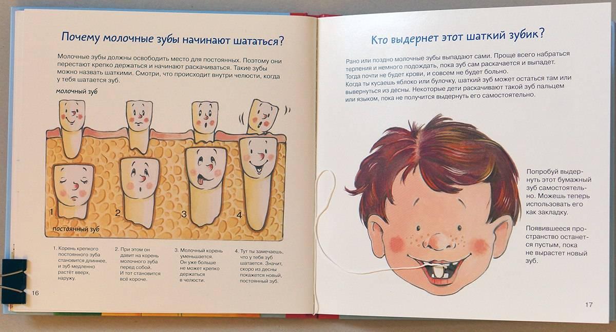 Когда выпадают молочные зубы у детей - первые признаки выпадения