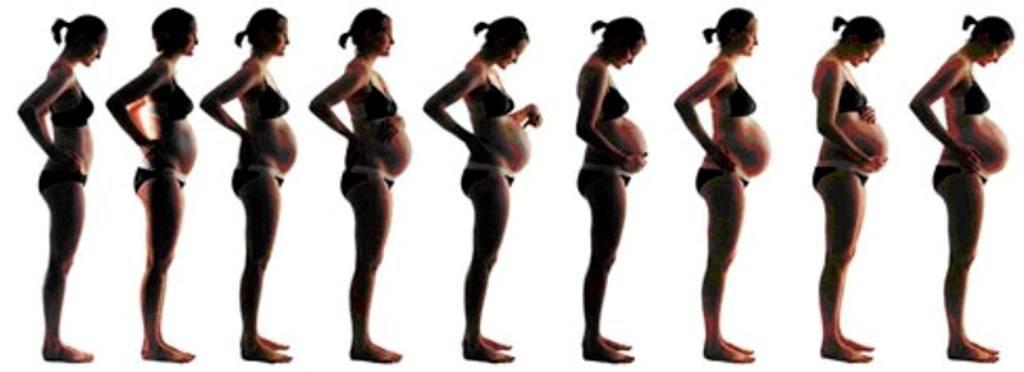 Как растет живот во время беременности. боли в животе: откуда? почему болит живот при беременности