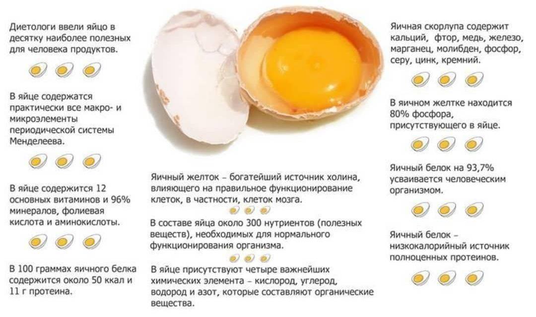 Можно ли ребенку перепелиные яйца и с какого возраста