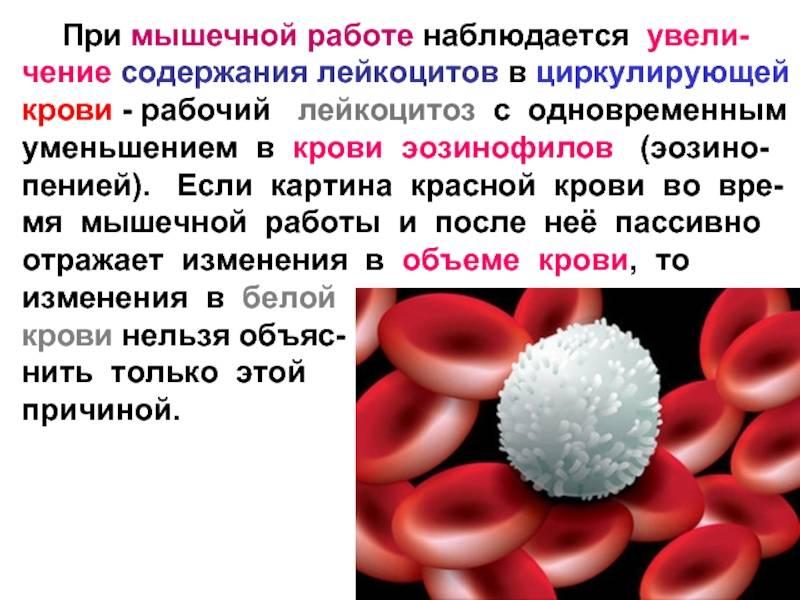 Лейкоцитоз при беременности лечение и симптомы