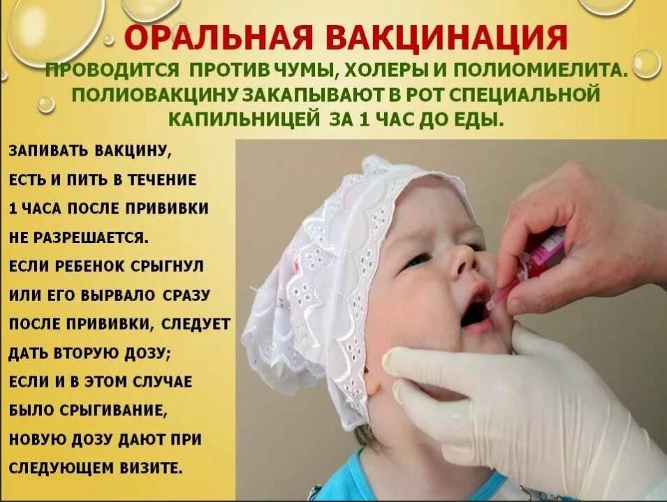 Все о прививке от полиомиелита: пути передачи, график вакцинации, противопоказания и виды вакцин