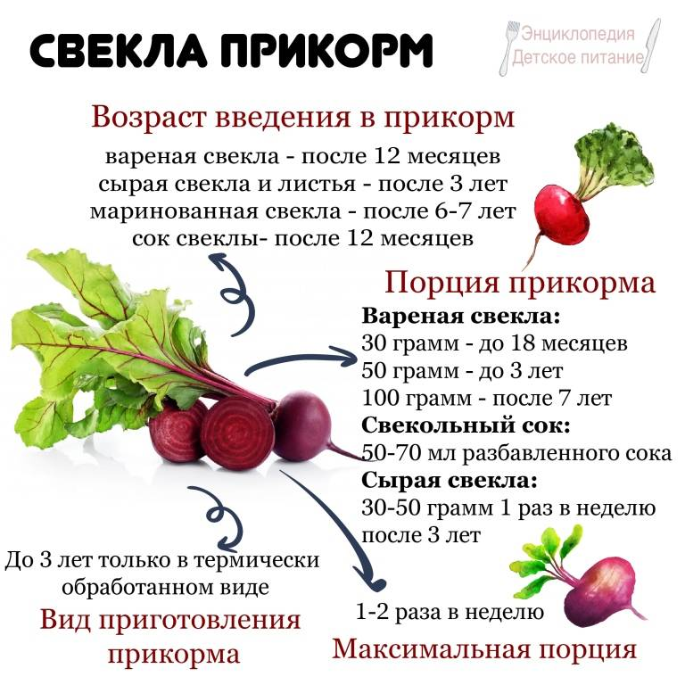 С какого возраста можно давать ребенку свеклу: сроки введения в прикорм, особенности приготовления, польза вареного овоща