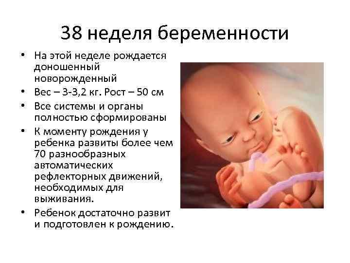 На каком сроке рожают первого ребенка чаще всего, во сколько недель малыш считается полностью доношенным? - врач 24/7