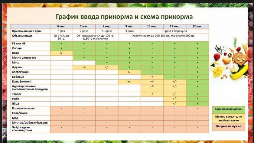 Схема прикорма с 6 месяцев по дням