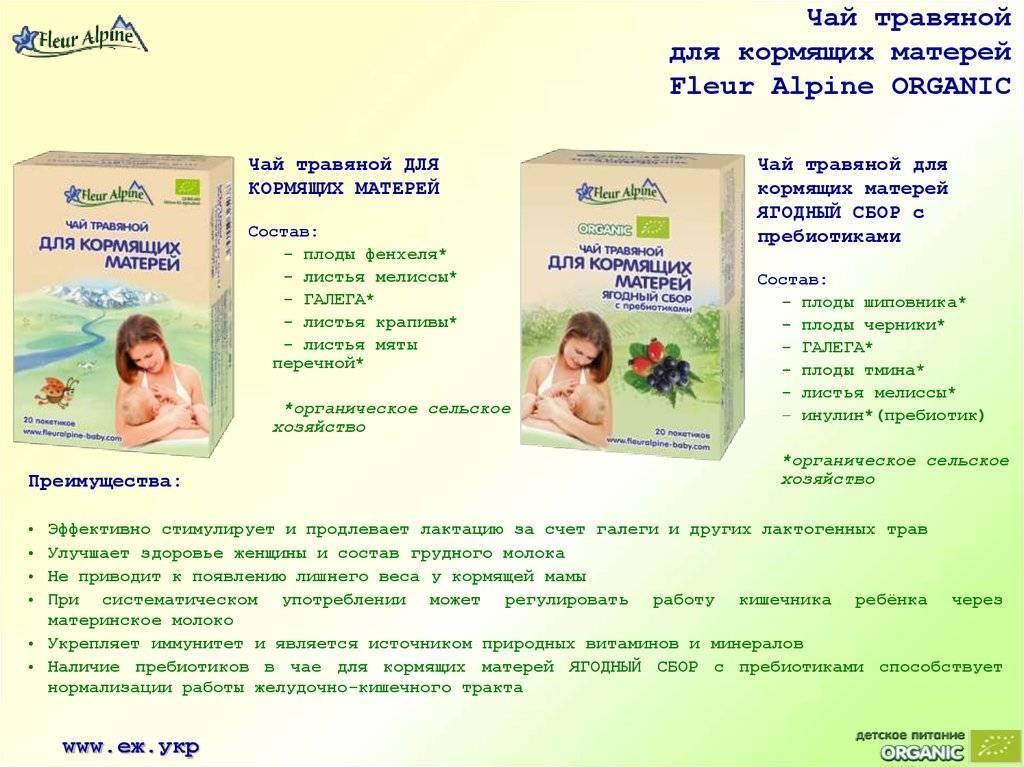 Употребление зеленого чая при грудном вскармливании