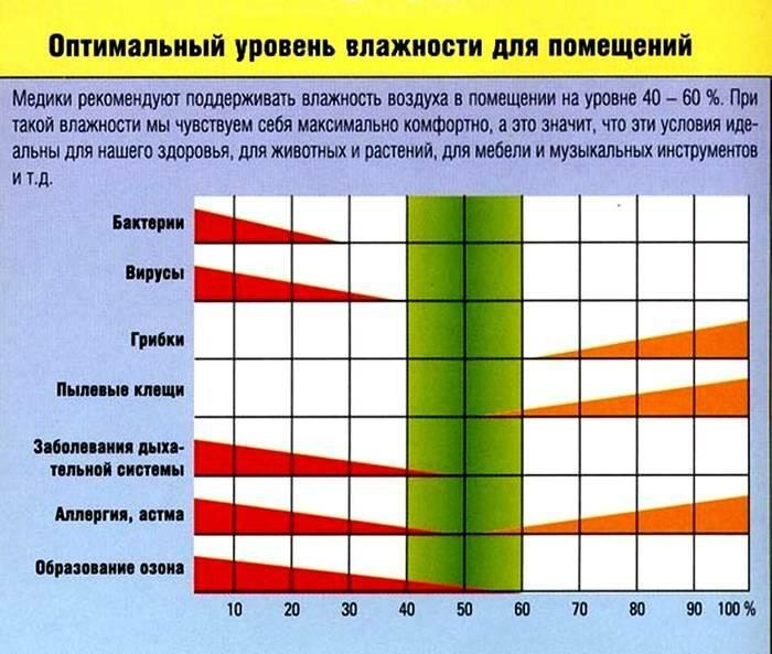 Как понять, что ребенок замерз на прогулке: 10 признаков - kolobok.ua
