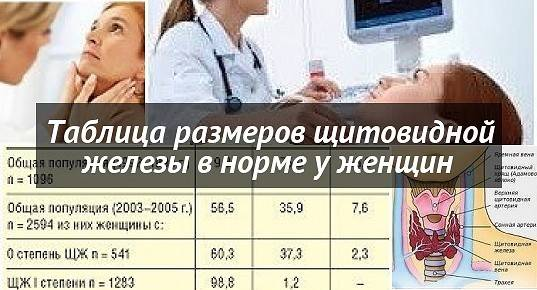 Диагностика функции щитовидной железы