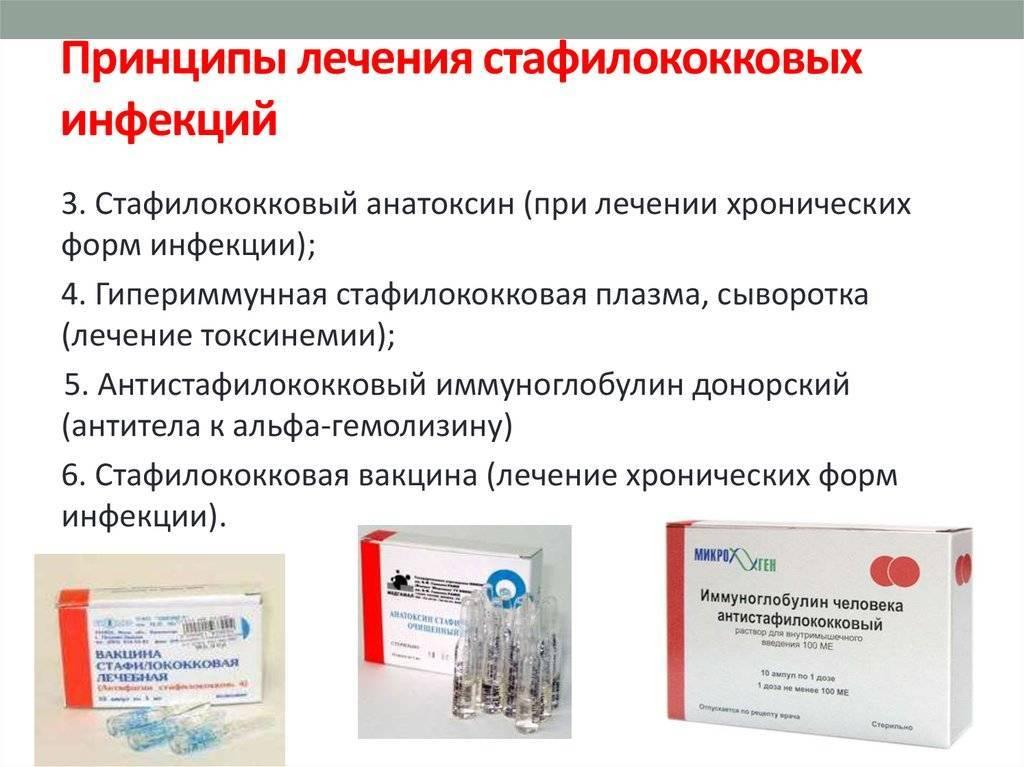 Стафилококк у взрослых и детей: гнойничковые заболевания кожи нужно лечить у врача! * клиника диана в санкт-петербурге