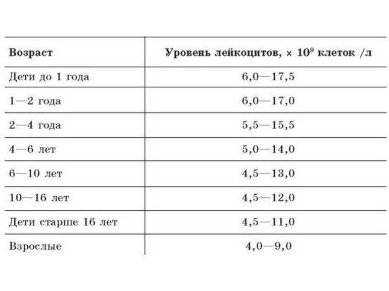Лейкоцитурия - лейкоциты в моче   университетская клиника