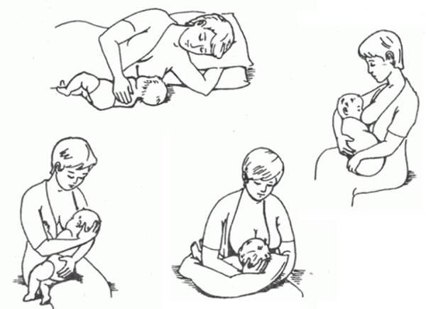 Как правильно прикладывать к груди ребенка