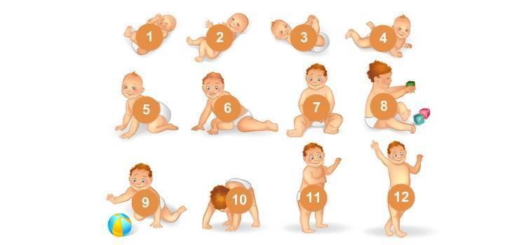 Как научить ребенка сидеть самостоятельно в 6-7 месяцев