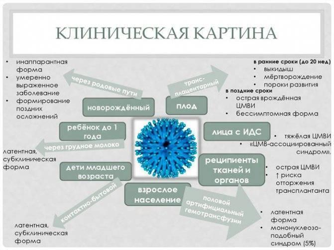 Энтеровирусные инфекции. причины, симптомы, лечение и профилактика.