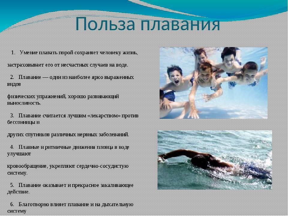Стили и виды плавания   swimguru
