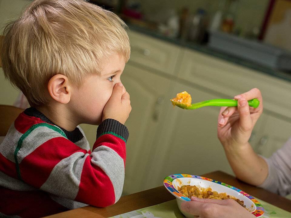 Ребенок не ест мясо. что делать?     материнство - беременность, роды, питание, воспитание
