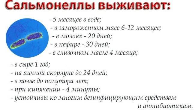 Сальмонеллез | компетентно о здоровье на ilive