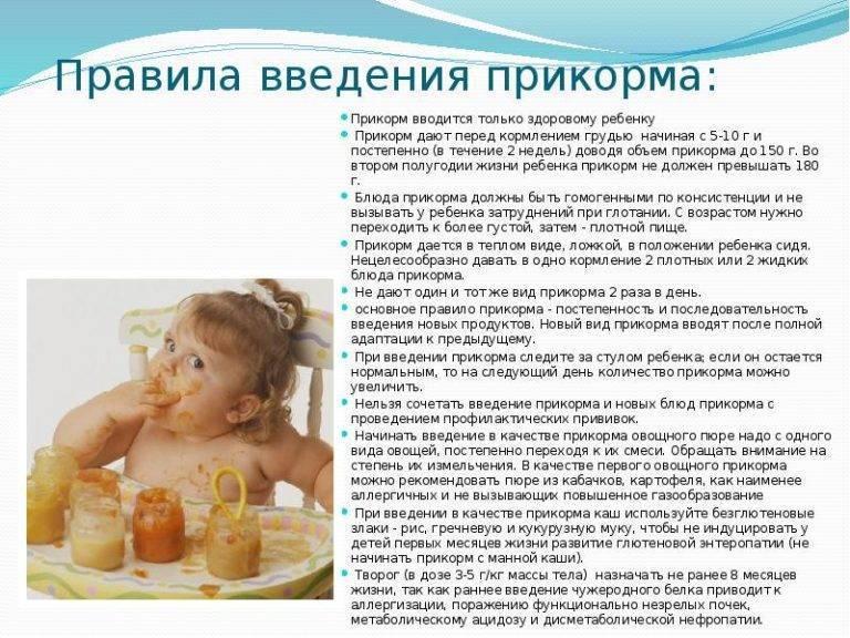 Осторожно, ранний прикорм!   | материнство - беременность, роды, питание, воспитание