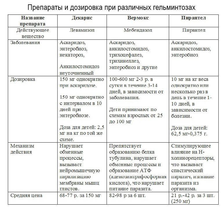 Аскаридоз у взрослых - симптомы и лечение, профилактика