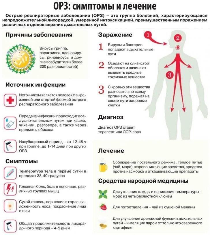 Если ребенок заболел гриппом: симптомы и лечение гриппа у детей