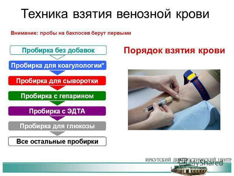 Подготовка к сдаче анализов крови - сибирский медицинский портал