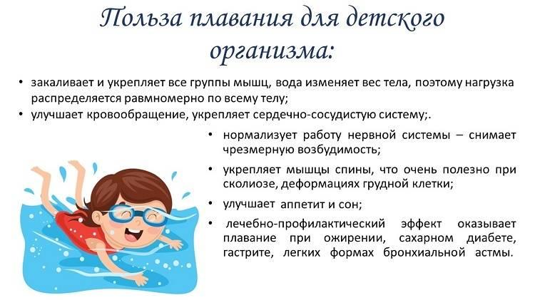 Внимание, ныряем! плавание влияет на умственное развитие ребёнка   здоровье:медицина   здоровье   аиф красноярск
