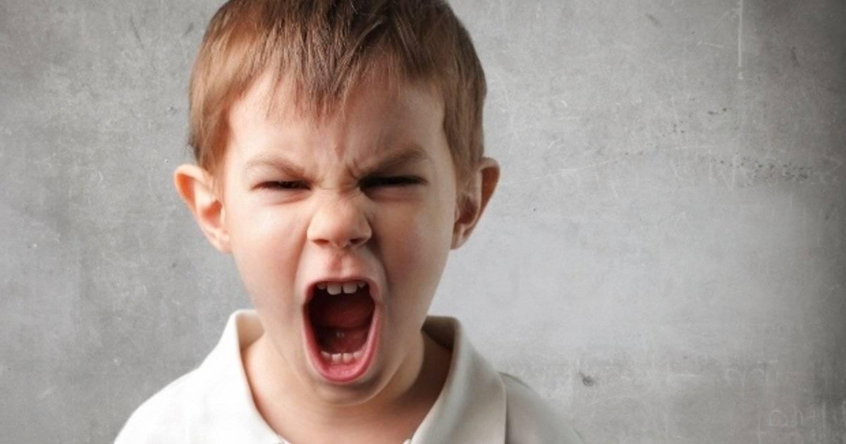 Когда ребенок раздражает