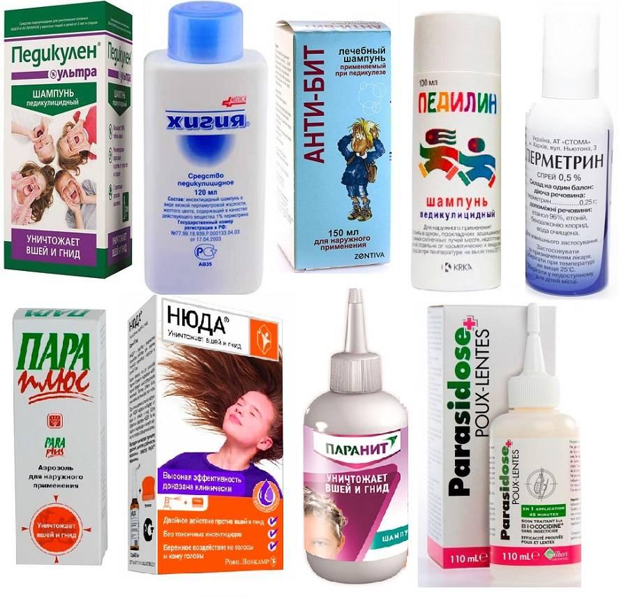 Профилактика педикулеза у детей: шампунь и другие средства от вшей
