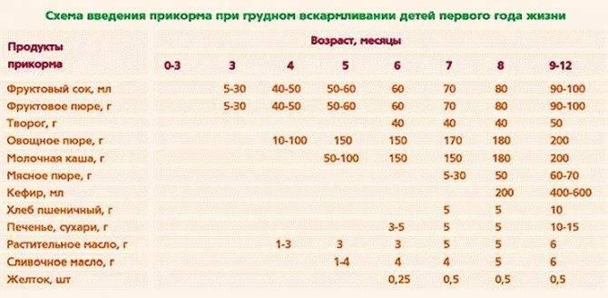 Размеры порций при введении прикорма ребенку.
