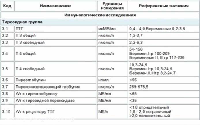 Эндокринология  женской сексуальности