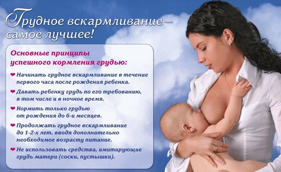 Грудное молоко после родов и после кесарева сечения: особенности лактации