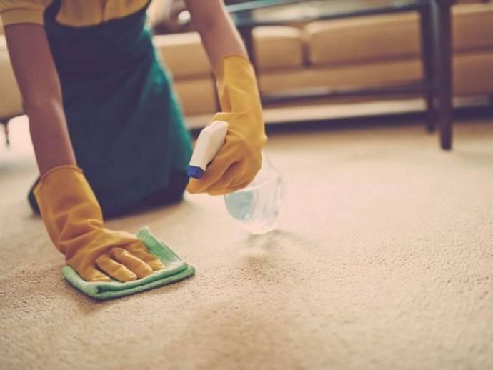 Как убрать запах кошачьей мочи с ковра в домашних условиях: чем можно вывести пятно, если кошка написала, как почистить изделие и не повредить его?