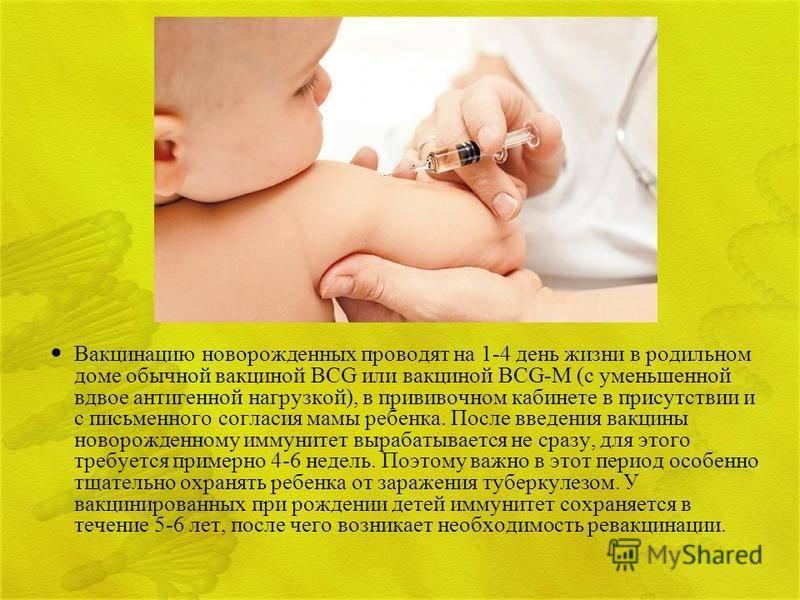 Какие прививки делают новорожденным? график прививок детям до года