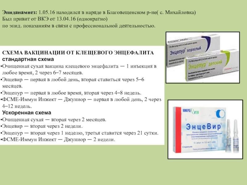 Вакцинация от клещевого энцефалита | управления роспотребнадзора по магаданской области