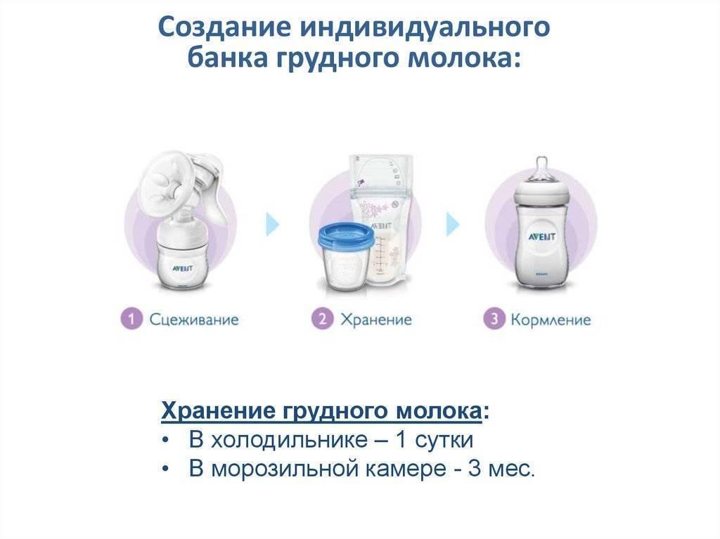 Как сцеживать грудное молоко руками: инструкции, фото