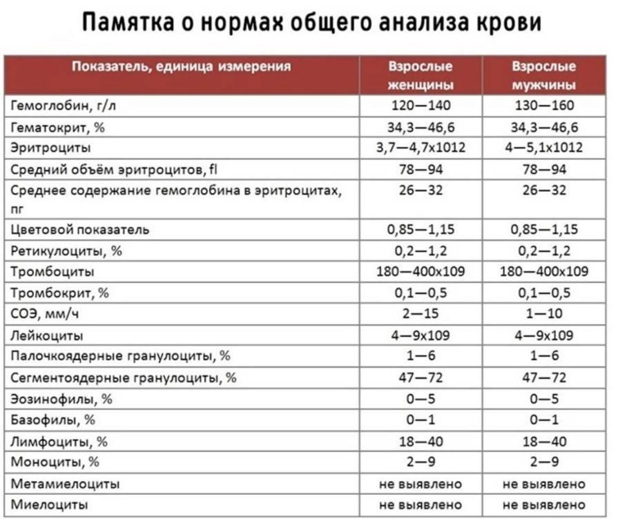 Норма тромбоцитов в крови: причины повышенных тромбоцитов