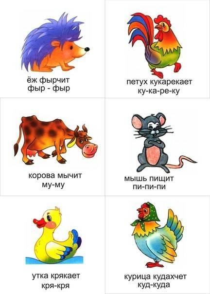 Woof! 17 английских слов, которые имитируют звуки животных