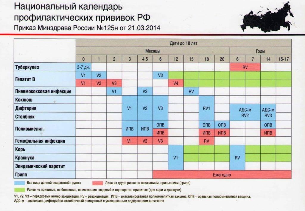 Календарь прививок для детей по возрасту: национальный график профилактической вакцинации до 14 лет