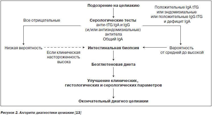 Алгоритм лабораторной диагностики целиакии
