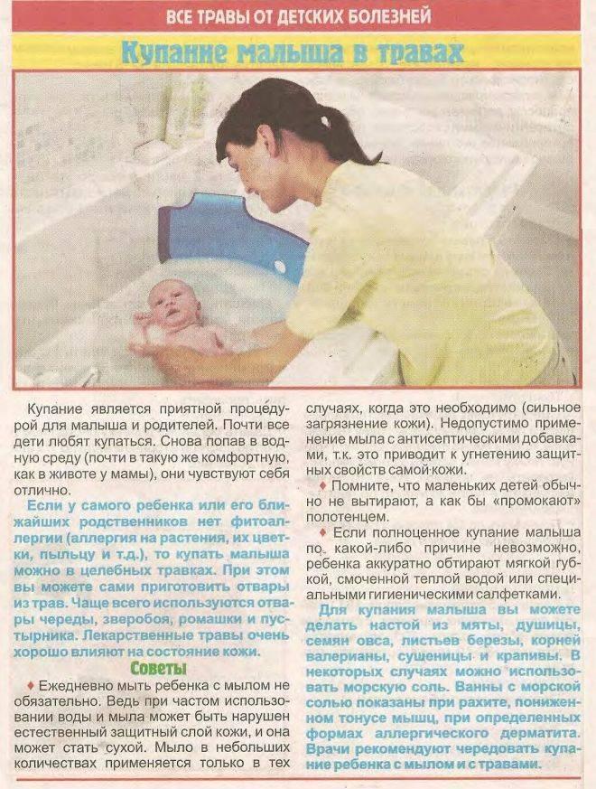 Череда для купания новорожденных: как заваривать в пакетиках и траву, отзывы, комаровский