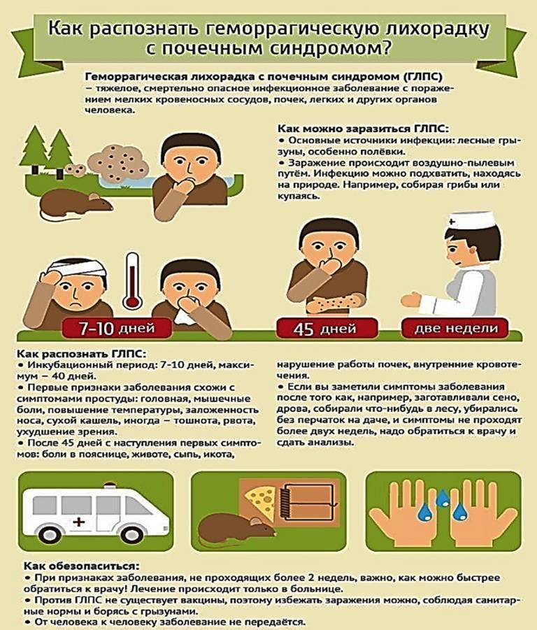 Профилактика геморрагической лихорадки с почечным синдромом