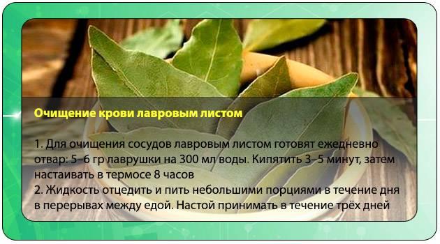Лавровый лист для выкидыша - рецепты, эффект и отзывы