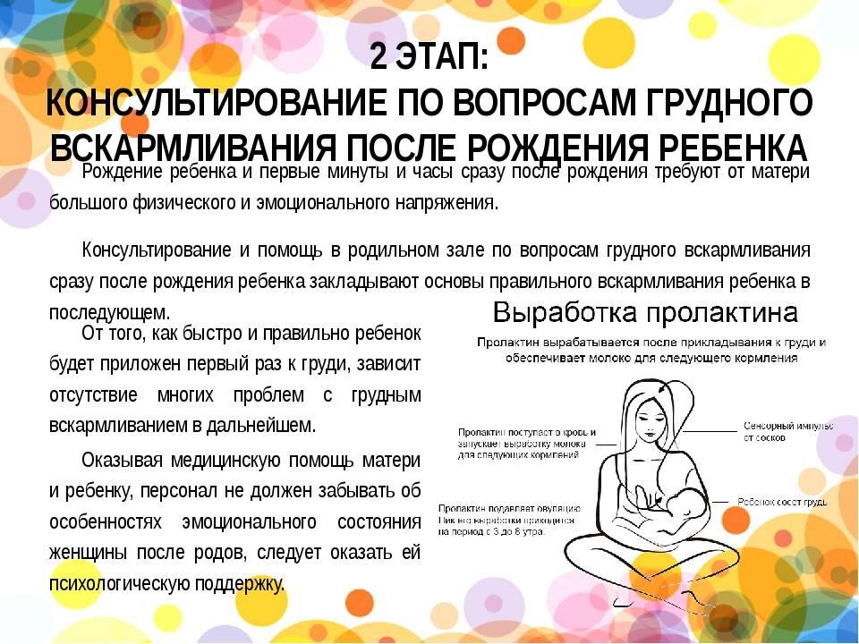 Первое кормление ребенка после родов, основные нюансы