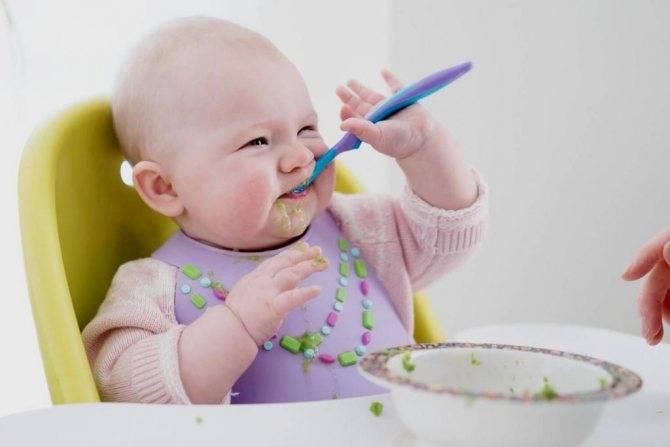 Ребенок плохо ест прикорм   что делать родителям