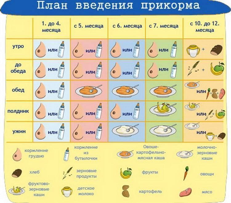 С какой рыбы начать прикорм ребенка и с какого возраста можно давать рыбу?