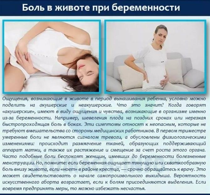 Болит живот при беременности. причины и последствия болей в животе у беременных