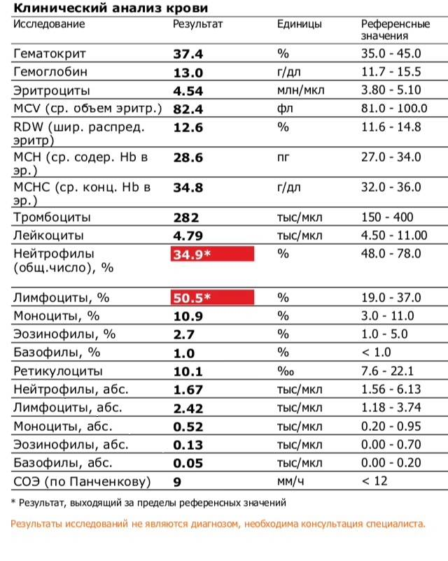 Нейтрофилы в анализе крови: норма и отклонения