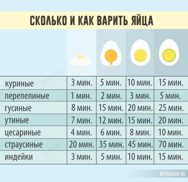 Сколько варить перепелиные яйца для ребенка в кастрюле