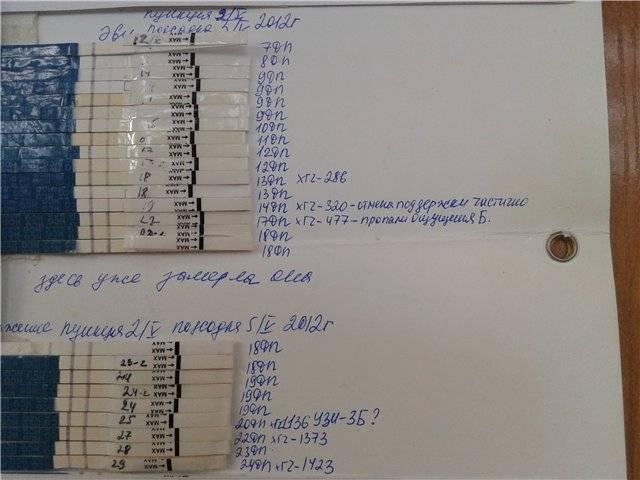 Тест на беременность после эко: на какой день после переноса эмбриона тест покажет беременность, причины отрицательного теста на 10 дпп
