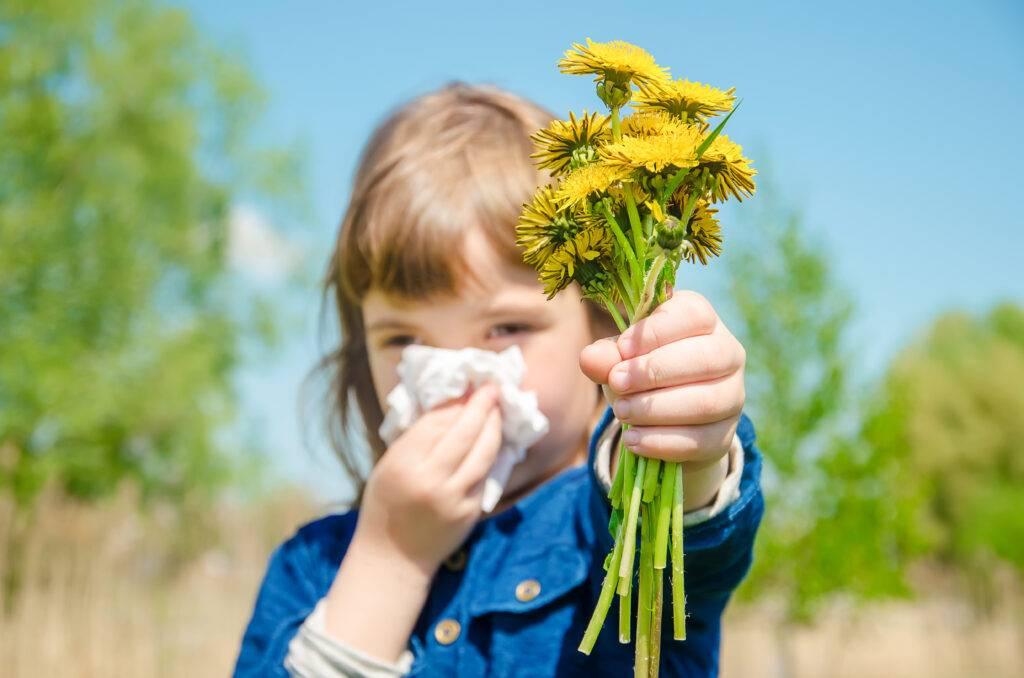 Аллергия на пыльцу   компетентно о здоровье на ilive