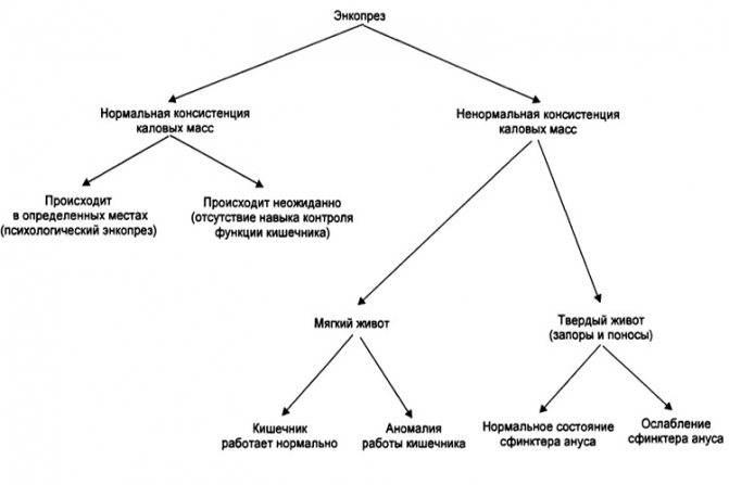 Запоры и энкопрез, дискинезия желчевыводящих путей
