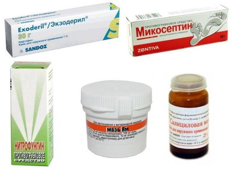 Эффективные мази от плоского лишая * клиника диана в санкт-петербурге
